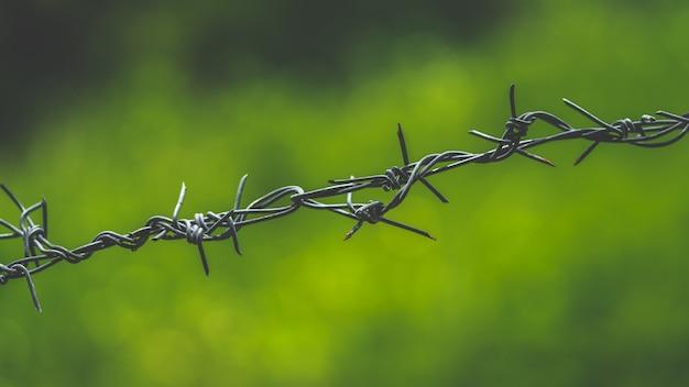 Cerca de alambre de púas
