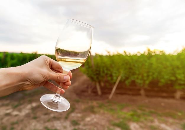 Cerca de una copa de vino blanco contra el paisaje de viñedos.