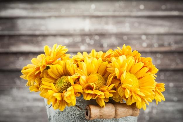 Cerca de crisantemo amarillo dorado