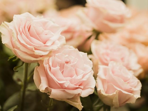 Cerca de delicadas flores de boda