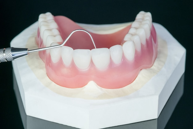 De cerca, dentadura completa o dentadura completa en negro.
