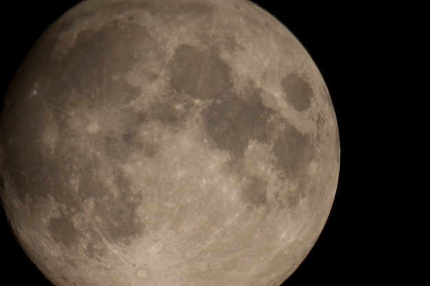 Cerca de la luna en el cielo nocturno sobre el lago de los bosques, ontario