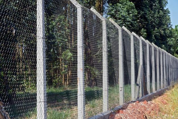 Cerca de malla de alambre con poste de concreto en plantaciones de eucalipto