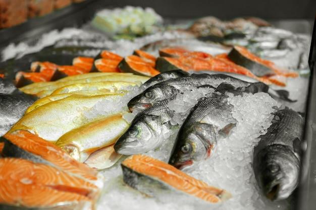 Cerca de mariscos refrigerados en la tienda de una pescadería