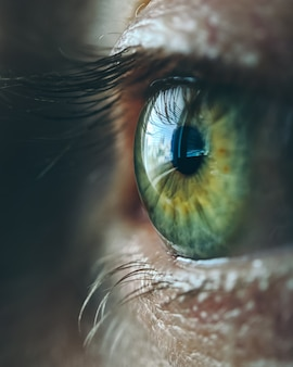 Cerca del ojo