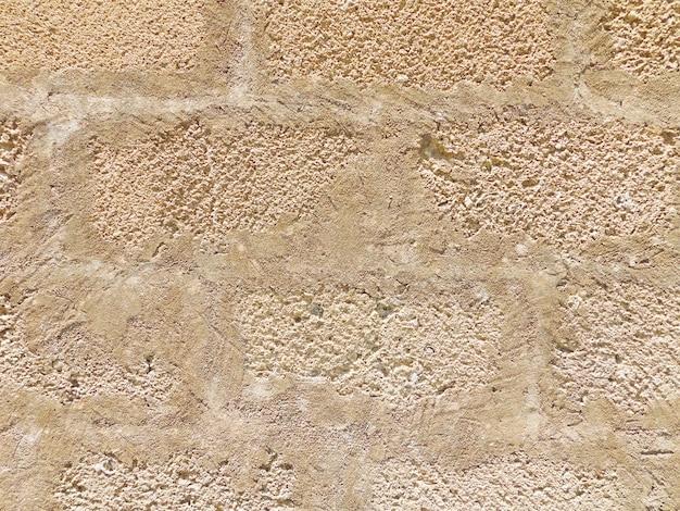 Cerca de la pared de ladrillos