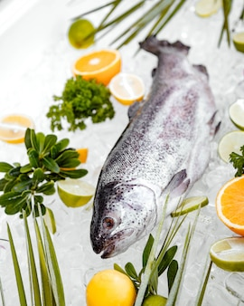 Cerca de pescado crudo colocado en hielo rodeado de frutas
