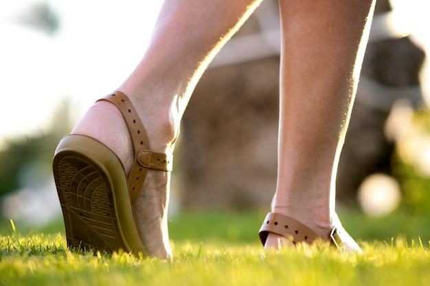Cerca de pies de mujer en zapatos de sandalias de verano caminando sobre césped de primavera cubierto de hierba verde fresca.