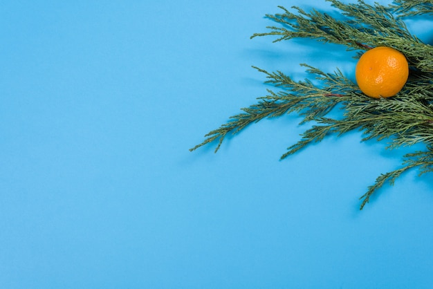 Cerca de ramas de enebro y mandarinas