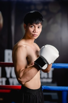 De cerca, retrato joven apuesto en guantes de boxeo blancos pose de pie sobre lienzo en el gimnasio, clase de boxeo de entrenamiento de hombre sano,