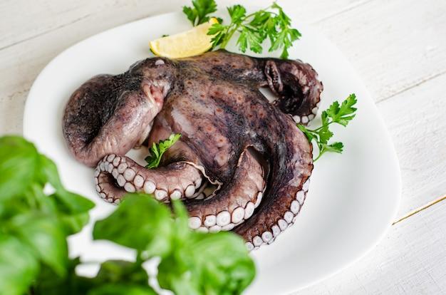 Cerca de tentáculos de pulpo crudo en plato blanco