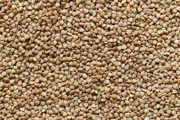 Cerca de textura de fondo de trigo sarraceno seco