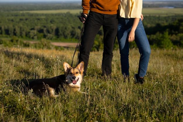 Cerca de viajeros con perro en la naturaleza.