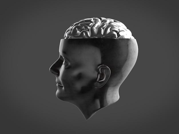 Cerebro cromado en cabeza de metal, cerebro abstracto representación 3d