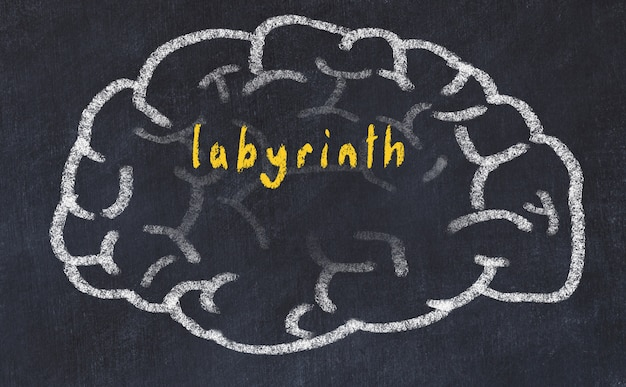 Cerebro con laberinto de inscripción