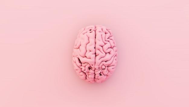 Cerebro rosado mínimo