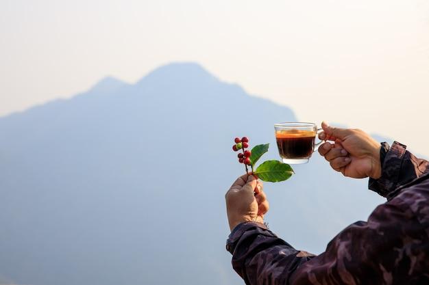 Cereza en grano de café crudo y taza de café caliente en mano y montaña natural