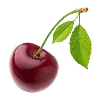 Una cereza roja con hoja aislada