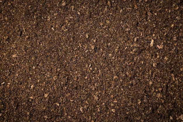 Cerrar el fondo y la textura sucia del musgo de turba del suelo