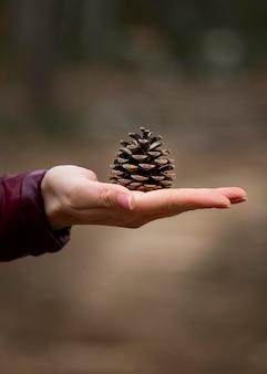 Cerrar mano con cono de pino