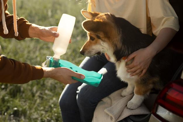 Cerrar propietarios dando agua para perros