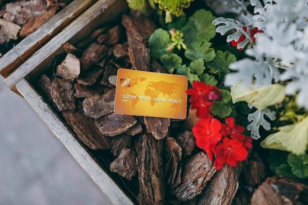 Cerrar tarjeta amarilla del banco de crédito en trozos de madera