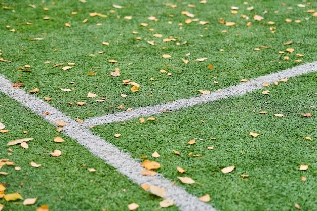 Césped artificial en campo de deportes con hojas