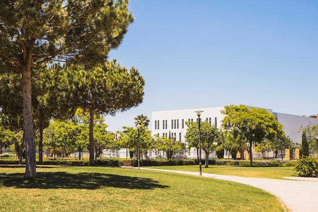 Césped del campus en un día soleado