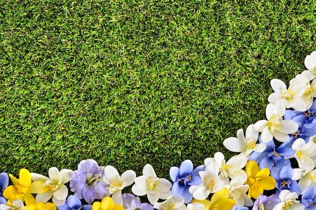 Césped con flores