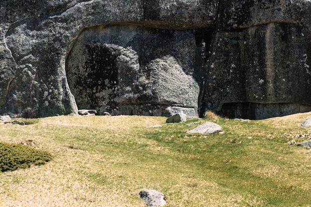 Césped y muro de piedra