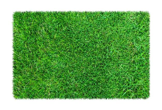 Césped verde. fondo de textura natural. hierba verde fresca de primavera. aislado sobre fondo blanco