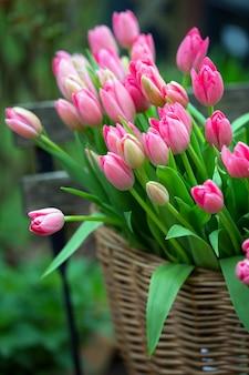 Cesta con hermosos tulipanes rosas. amsterdam