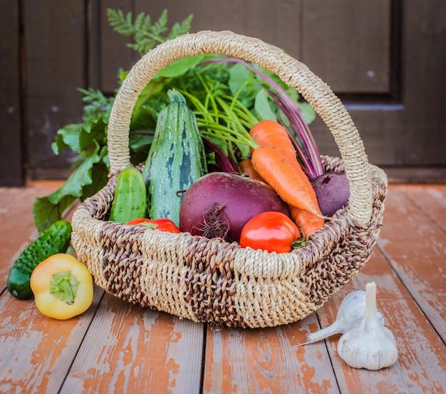 Cesta de hortalizas orgánicas cultivadas en sus propias manos en el invernadero.