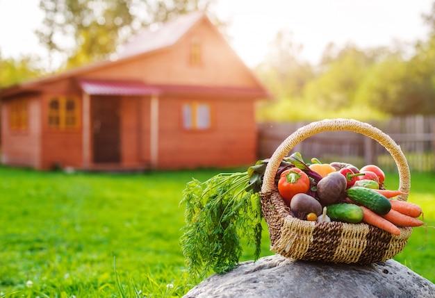 Cesta llena de verduras ecológicas frescas en la hierba al atardecer en casa de madera rústica.