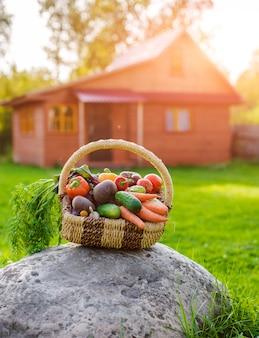 Cesta llena de verduras ecológicas frescas en la hierba al atardecer con una casa de madera rústica.