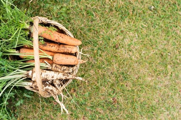 Cesta llena de zanahorias con espacio de copia