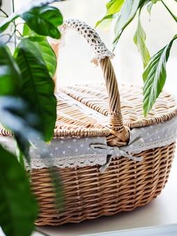 Cesta de mimbre vintage en el alféizar de la ventana con plantas verdes