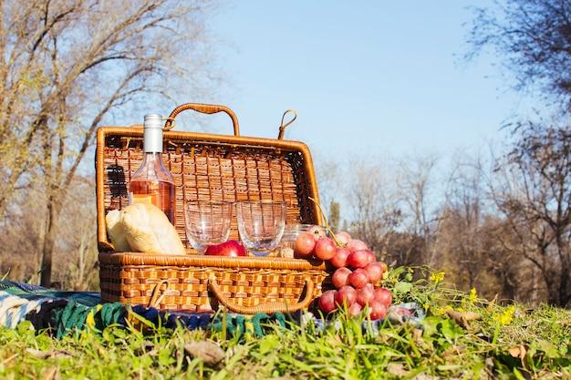 Cesta de picnic con botella de vino y uvas.