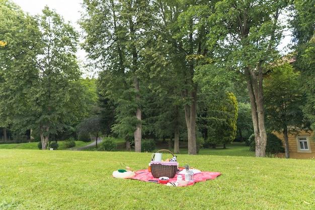 Cesta de picnic en el campo de hierba