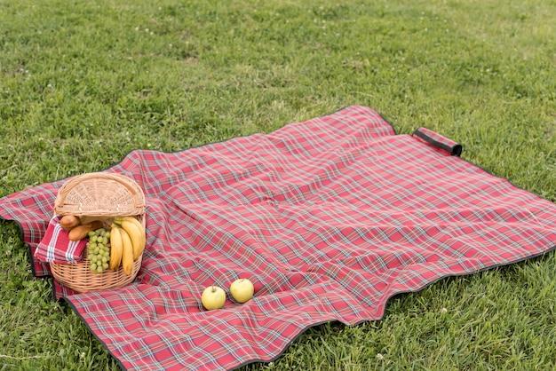 Cesta de picnic y manta sobre césped del parque