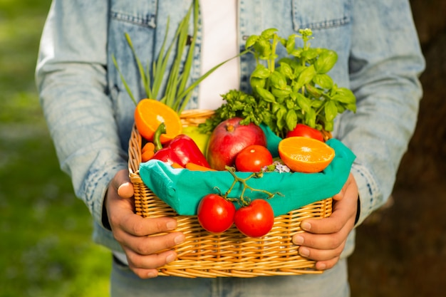 Cesta con verduras y frutas en manos de un agricultor de fondo de la naturaleza. de estilo de vida saludable