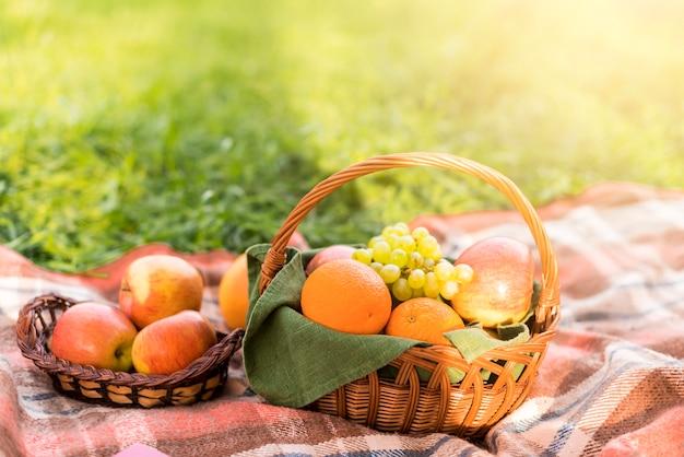 Cestas de frutas en manta de picnic en el parque