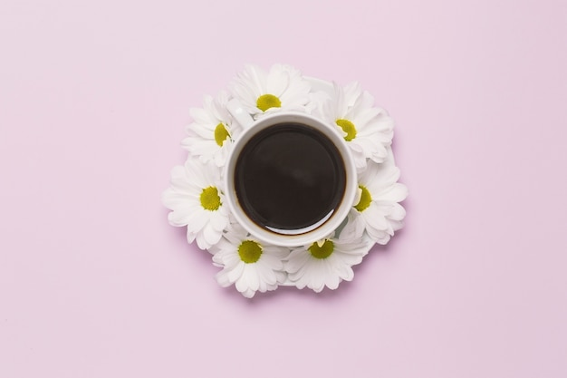 Chamomiles alrededor de la taza de café