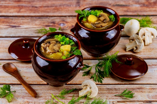 Champiñones blancos cocidos con patatas y carne en ollas de estofado