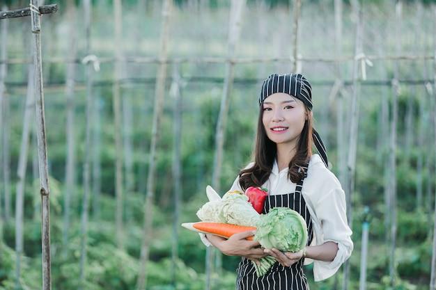 Chef cosechando productos frescos de granja orgánica