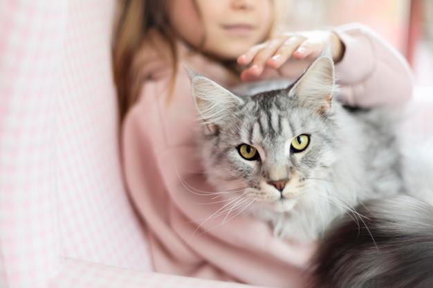 Chica acariciando a su hermoso gato