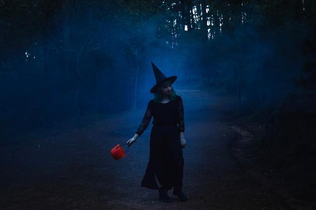 Chica bruja en el camino brumoso
