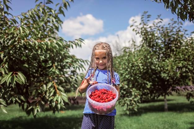 Chica en camisetas azules sosteniendo un cubo lleno de frambuesa fresca en el jardín de su casa