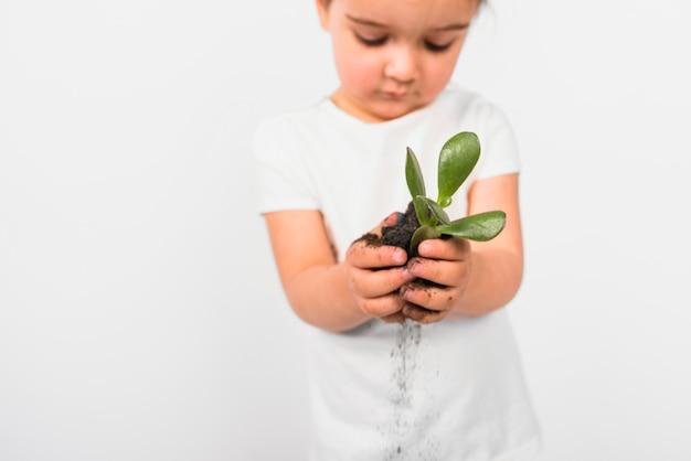 Chica defocused sosteniendo la planta en su mano aislada sobre fondo blanco