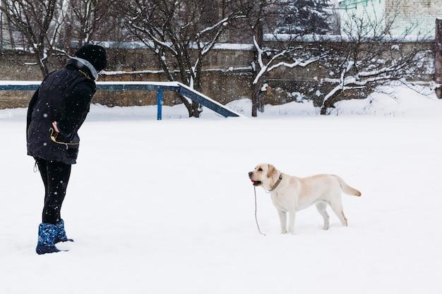 Chica entrena al perro labrador invierno.
